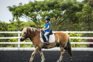 En équitation, comment devez-vous vous équiper ?